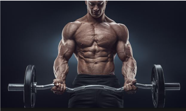Bodybuilding 101 – Top 10 Training Tips to Maximise your Results